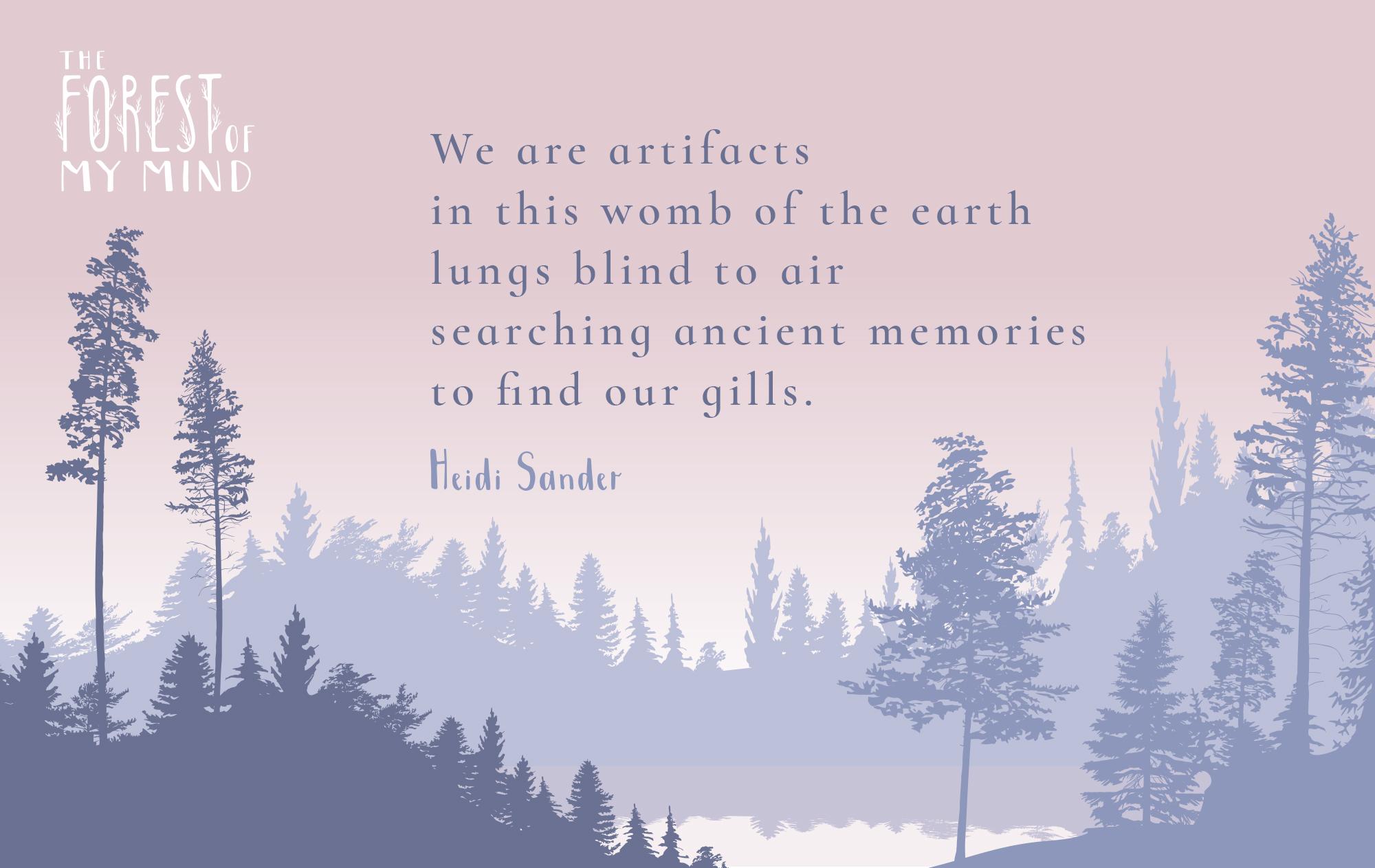 Heidi Sander Poetry